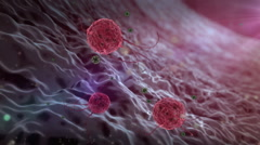 Phagocyte and virus Stock Footage
