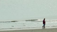 Couple walking along the beach of the North Sea in Holland Stock Footage