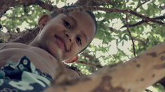 Cute boy on the tree Stock Footage