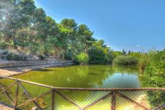 hdr pond - stock photo
