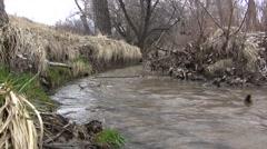 Bending Early Spring Creek Stock Footage