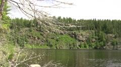 Stock Video Footage of White Bird Flying Looping Lake
