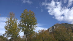 Time lapse aspen trees and mountains - stock footage
