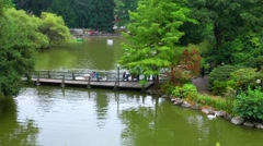 The Park and People Having Fun on Lake Stock Footage