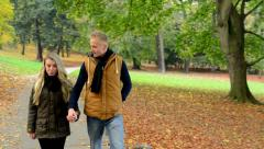 Young model couple in love - autumn park(nature) - couple walking in park Stock Footage
