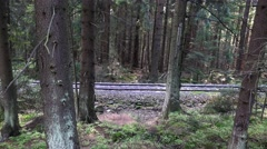 4k Narrow gauge rails tilt in mountain range forest Harz Stock Footage