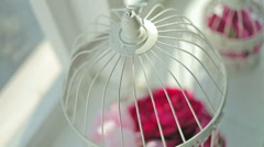 Bridal cage for pigeons, still life Stock Footage