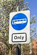 bus only - stock photo