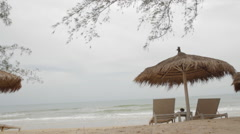 White Sun Loungers Under Palm Leaf Parasol Trees Over Head Stock Footage