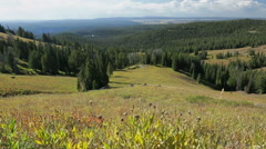 Scenic view from Mount Washburn in Yellowstone Stock Footage