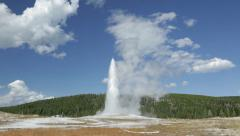 Wide shot of Old Faithful geyser in Yellowstone - stock footage