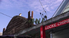 Early Chinese town of Locke, CA, cat on tin roof Stock Footage