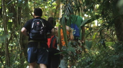 Tourists walking through the rainforest on a canopy tour Stock Footage