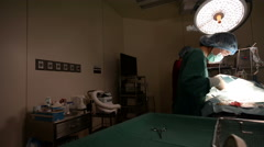 dolly shot of veterinarian doctor in operation room - stock footage