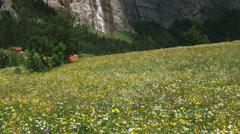 Alpine waterfall Stock Footage