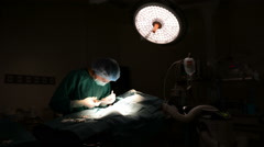 Dolly shot of veterinarian doctor in operation room Stock Footage