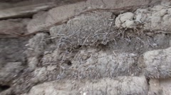 History North Platte Winter Sod House Pioneer Settlers Closeup Zoom Out Stock Footage