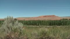 Land Use Ten Sleep Summer Corn Desert Irrigated Cropland - stock footage