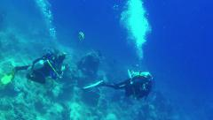 13of16 Men scuba diving near coral reef, Red Sea, Egypt Stock Footage