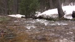 Downstream Snowmelt Creek Flowing Stock Footage