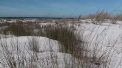Ocean Gulf Islands National Seashore Winter Dune Beach Grass Stock Footage