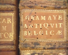 Mafra Library: pan bookshelf with gold leather books, bound in rocaille style Stock Footage