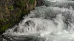 Sockeye Salmon Jumping Summer Falls Rapids - stock footage