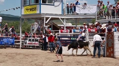 a boy calf riding at childrens rodeo - stock footage