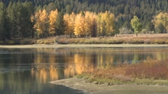Lake & Pond Grand Teton National Park Fall Foliage Zoom Out - stock footage