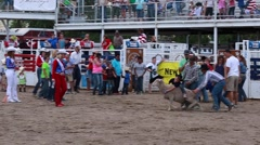 A kids sheep ride at childrens rodeo Stock Footage