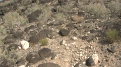 Desert Albuquerque Volcanic Rock Desert Southwest Tilt Up Stock Footage