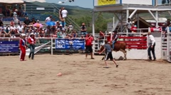 boy calf riding in childrens rodeo - stock footage