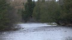 River & Stream Saint Croix National Scenic River Spring Namegakon River Stock Footage