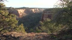 Desert Colorado National Monument Spring - stock footage