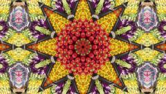 Kaleidoscope mosaics Stock Footage