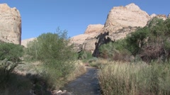 River & Stream Capital Reef National Park Spring Desert Stock Footage