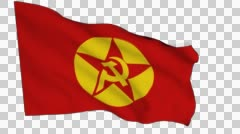 Flag animation white alpha-Revolutionary People's Liberation Party–Front Stock Footage