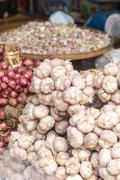 common garlic and red onion - stock photo