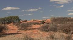 Desert Kgadagali Transfrontier Park Winter Red Sand Dune Stock Footage