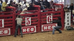 African Ameican Cowboy in Bull Riding competition Stock Footage