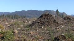 Land Use Olympic National Park Fall Logging Clear Cut Stock Footage