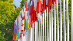 Flags of the member states of the Council of Europe - stock footage