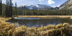 Colorado beaver dam ponds - stock photo