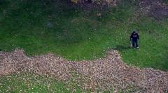 Workman blowing leaves off lawn (Handheld). - stock footage