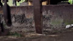 An anitque plow and tractor in disrepair Stock Footage