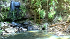 Curtis Falls Mount Tamborine Gold Coast Queensland Australia 02 Stock Footage