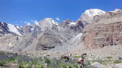 Donkeys grazing in the mountains. Panorama. Pamir. Tajikistan Stock Footage