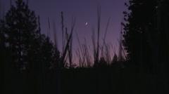 Crescent Moon Thru Grass - stock footage