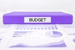 Budget management with graphs, charts and financial plan Stock Photos