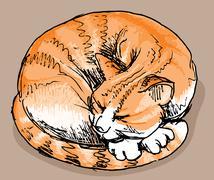 Sleeping red cat - stock illustration